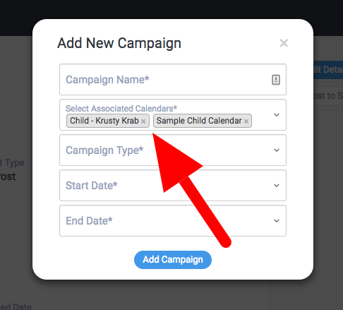Add a Campaign Overlay/Form – DivvyHQ